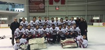 TDCAA Hockey Finals