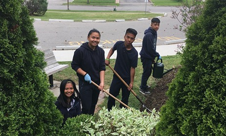 St. Jerome Beautifying Project