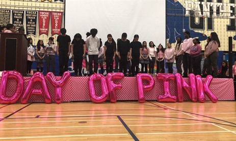 TCDSB Celebrates Day of Pink