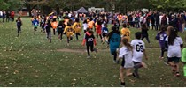 Elementary Cross Country