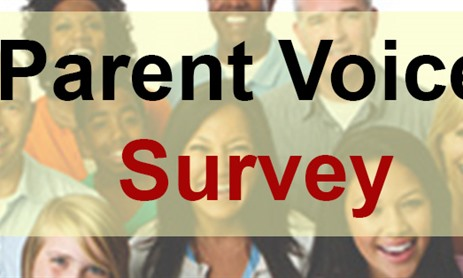 Parent Voice Survey 2018