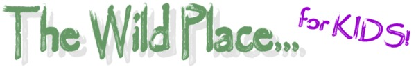 wild place banner