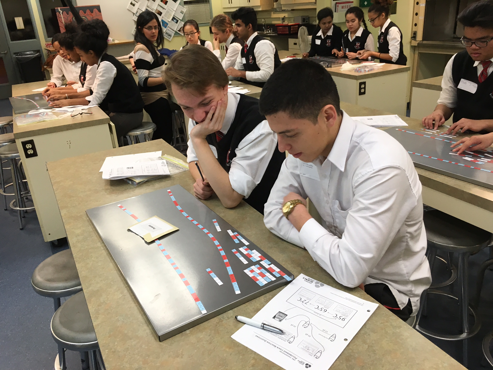 Students working on DNA lab