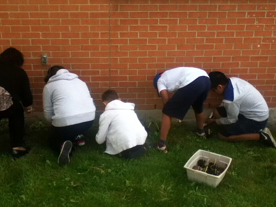 beautifying school yard.jpg